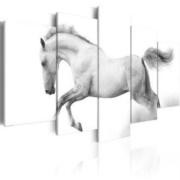 Tableau Cheval - Passion et liberté  | cosy-home-design.fr