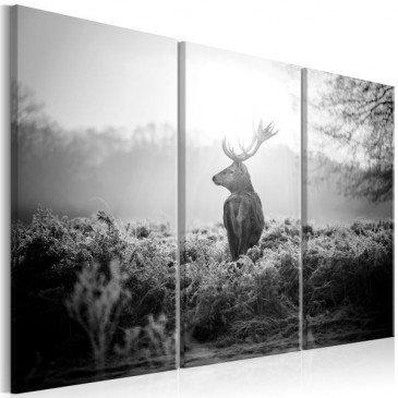 Tableau Black and White Deer I  | cosy-home-design.fr