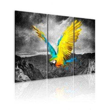Tableau Oiseau de paradis  | cosy-home-design.fr