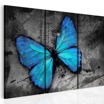 Tableau Etude d'un papillon - triptyque  | cosy-home-design.fr