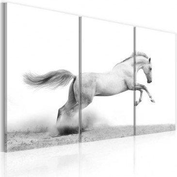 Tableau Cheval au galop  | cosy-home-design.fr