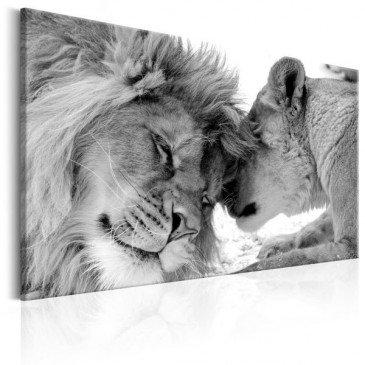 Tableau Lion's Love  | cosy-home-design.fr