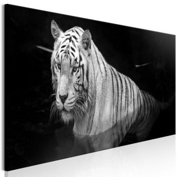 Tableau Shining Tiger 1 Pièce Black and White Narrow  | cosy-home-design.fr
