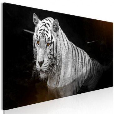 Tableau Shining Tiger 1 Pièce Orange Narrow  | cosy-home-design.fr