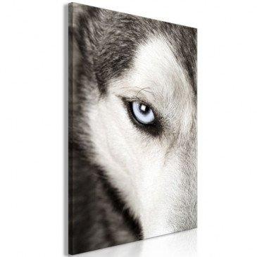 Tableau Dog's Look 1 Pièce Vertical  | cosy-home-design.fr
