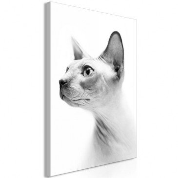 Tableau Hairless Cat 1 Pièce Vertical  | cosy-home-design.fr