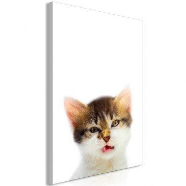 Tableau Vexed Cat 1 Pièce Vertical  | cosy-home-design.fr