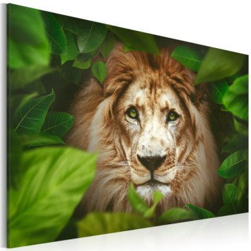Tableau Eyes of the jungle  | cosy-home-design.fr