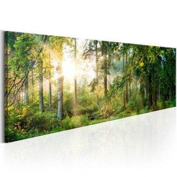 Tableau Forest Shelter  | cosy-home-design.fr
