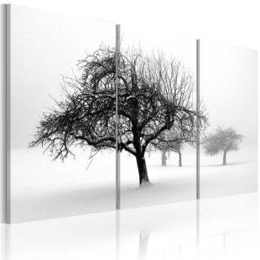 Tableau Arbres dans le brouillard  | cosy-home-design.fr
