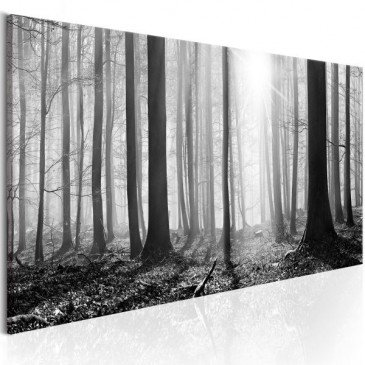 Tableau Black and White Forest  | cosy-home-design.fr