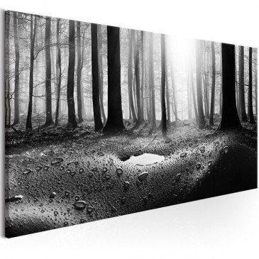 Tableau Forest after Rain (1 Part) Narrow  | cosy-home-design.fr
