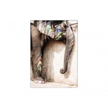 Toile Éléphant Coloré | www.cosy-home-design.fr